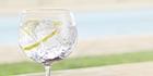 Gin: 7 merken geproefd